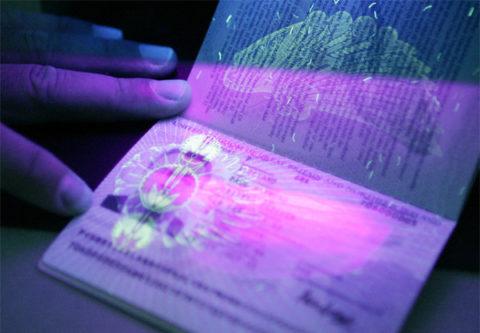 Разрешено ли мусульманам получать биометрические паспорта?
