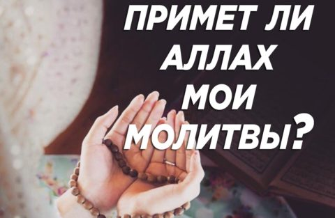 «…и не теряйте надежды на милость Аллаха, ибо отчаиваются в милости Аллаха люди неверующие»